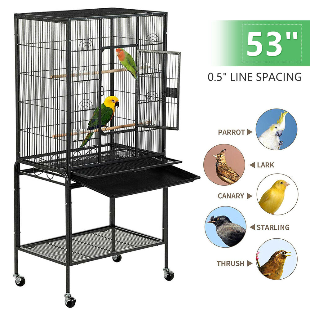 53 large parrot bird cage chinchilla cockatiel conure house w stand pet supply ebay. Black Bedroom Furniture Sets. Home Design Ideas