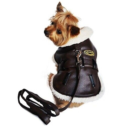new dog clothes harness winter coat flight jacket brown