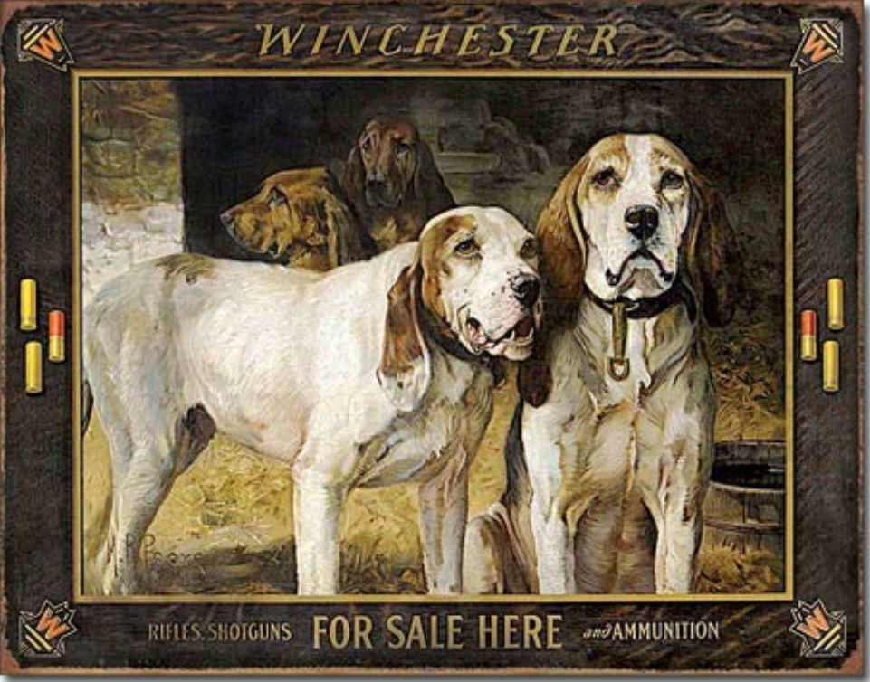 Hunting Dogs For Sale On Ebay