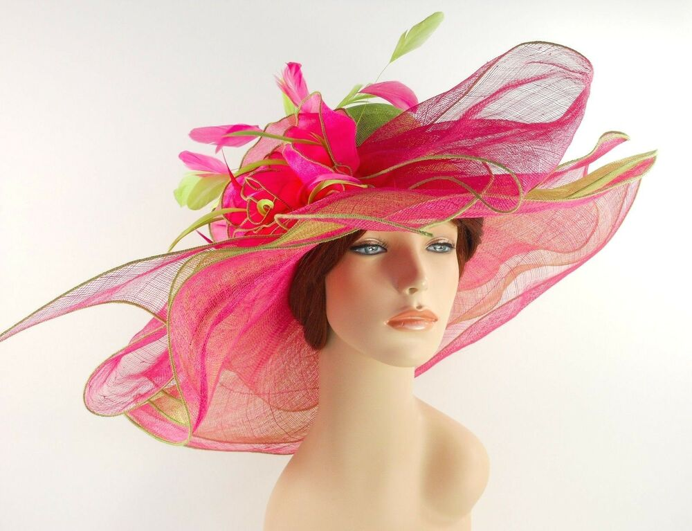 Image Result For Pink Hats Society