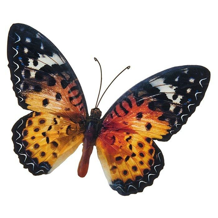 Large metal colourful butterfly garden decoration wall art for Outdoor butterfly decor