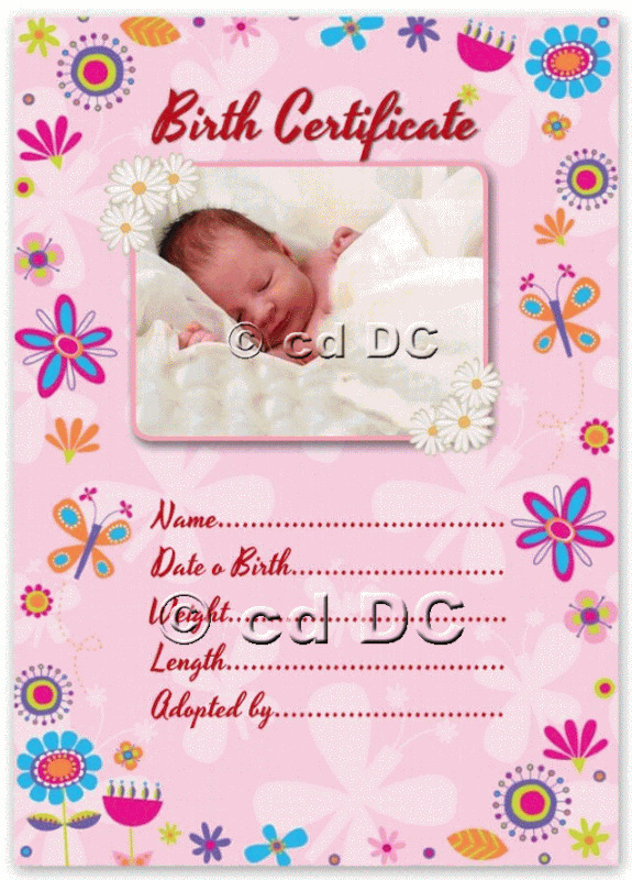 pretty pink baby birth certificate certificates 4 reborn fake baby approx 5quotx 7quot ebay