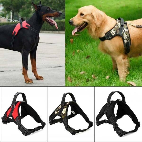Adjustable Harness Lead Collar Leash Belt Rope leash For Pet Dog Cat Puppy New