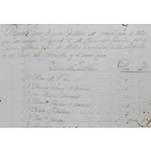 Aguadilla, Puerto Rico Genealogy Census/Censo c.1820