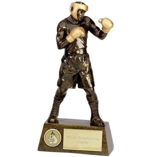 'Pinnacle' Boxing Figure, Boxing Trophy, Award, 220mm, FREE Engraving(A1249C) gw