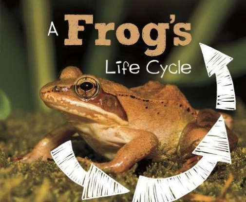 Royaume-UniDunn  Mary R.-A Frog`S Life Cycle BOOKH NEUF
