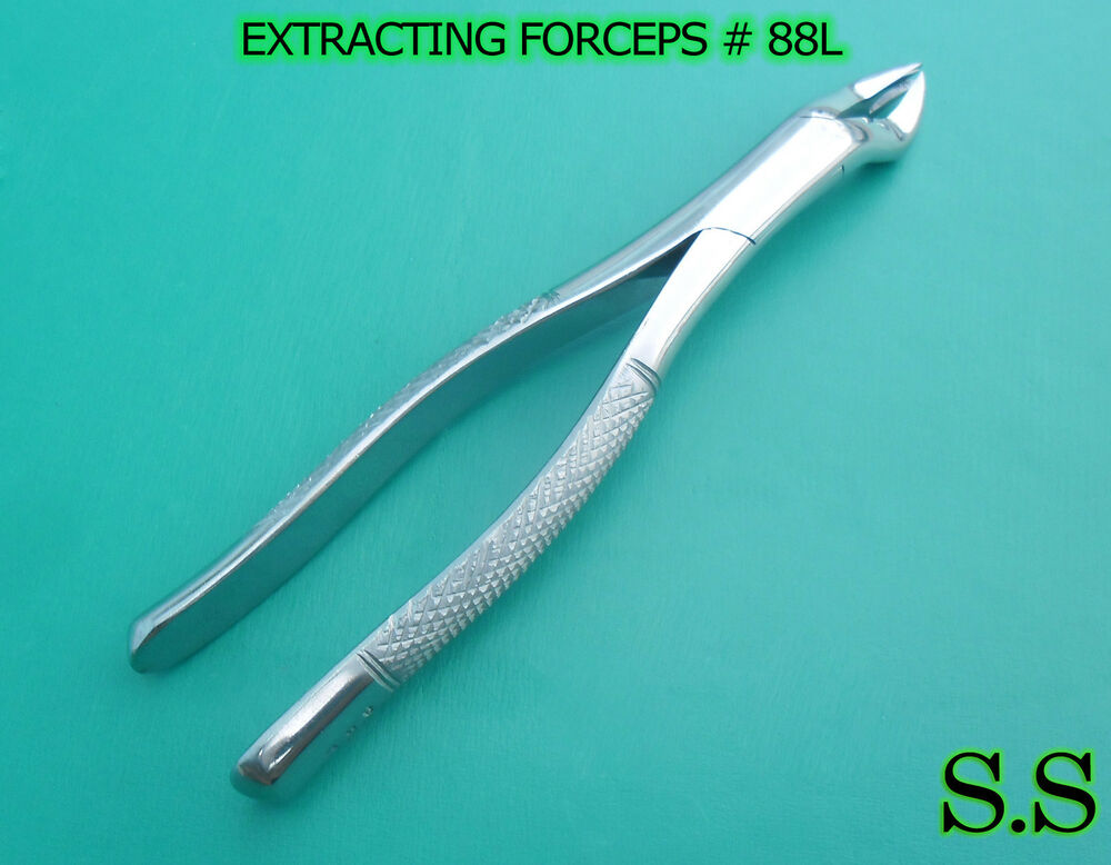dental extracting forceps 88l -#main