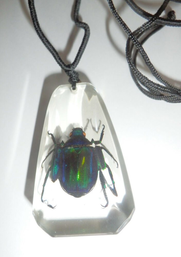Insect Large Necklace Colorful Scarab Beetle metallic ...