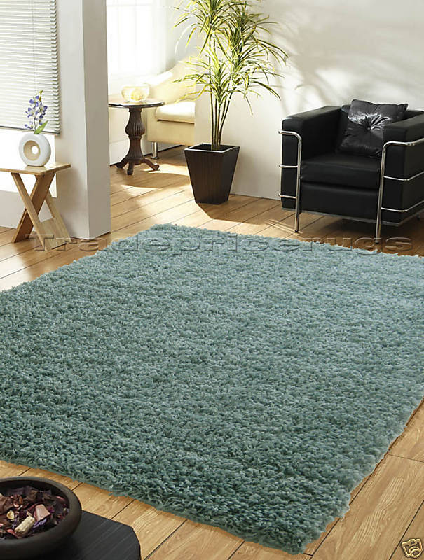 LARGE DUCK EGG BLUE THICK SHAGGY MODERN RUG 110x160 EBay