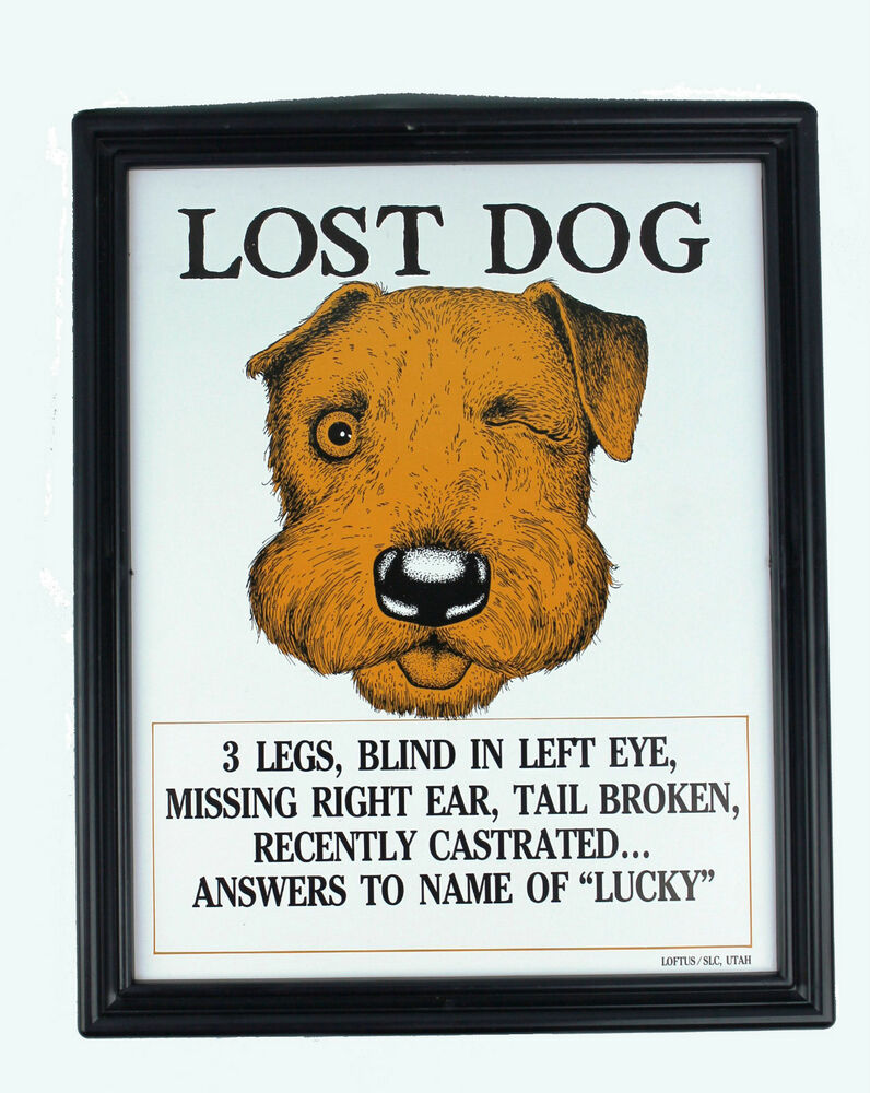 Lost Dog Lucky Plaque Adult Only Gag / Joke | EBay  Lost Dog Flyer Examples