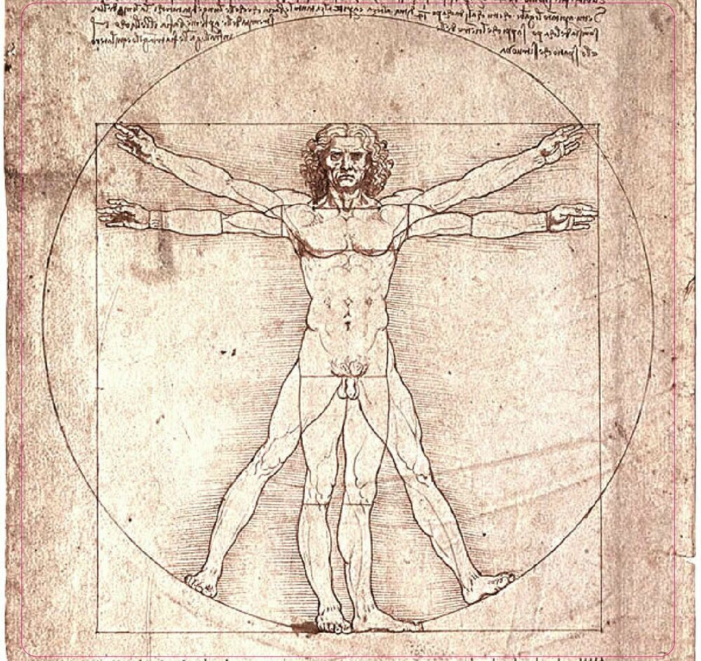 leonardo da vinci vitruvian man 4 sticker ebay. Black Bedroom Furniture Sets. Home Design Ideas
