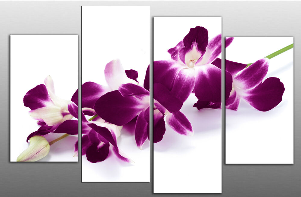 large plum purple orchids on white canvas picture wall art multi split panel 40 ebay. Black Bedroom Furniture Sets. Home Design Ideas