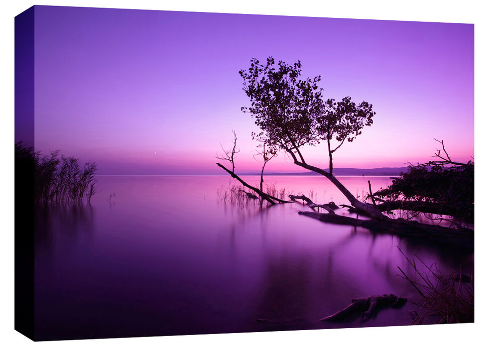 extra large purple lake box canvas wall art picture scenic 4ft wide a0 3cm frame ebay. Black Bedroom Furniture Sets. Home Design Ideas