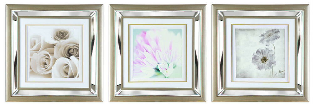Wall Art Glass Framed : Wall art picture with mirror glass mounted
