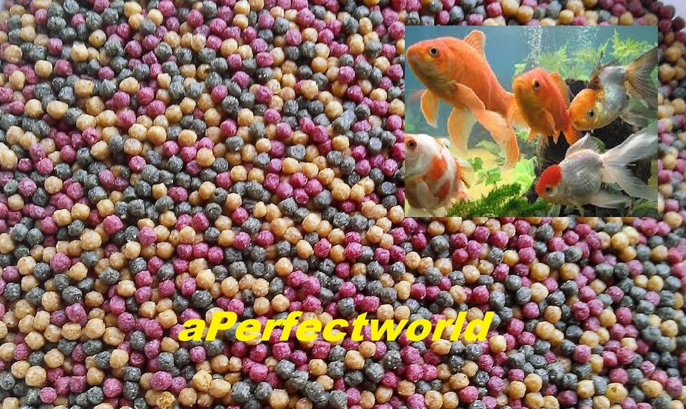 Best quality value fish food mixed pellets for koi for Best food for koi fish