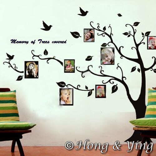 Photo picture tree frame set wall art stickers vinyl for Home decorations on ebay