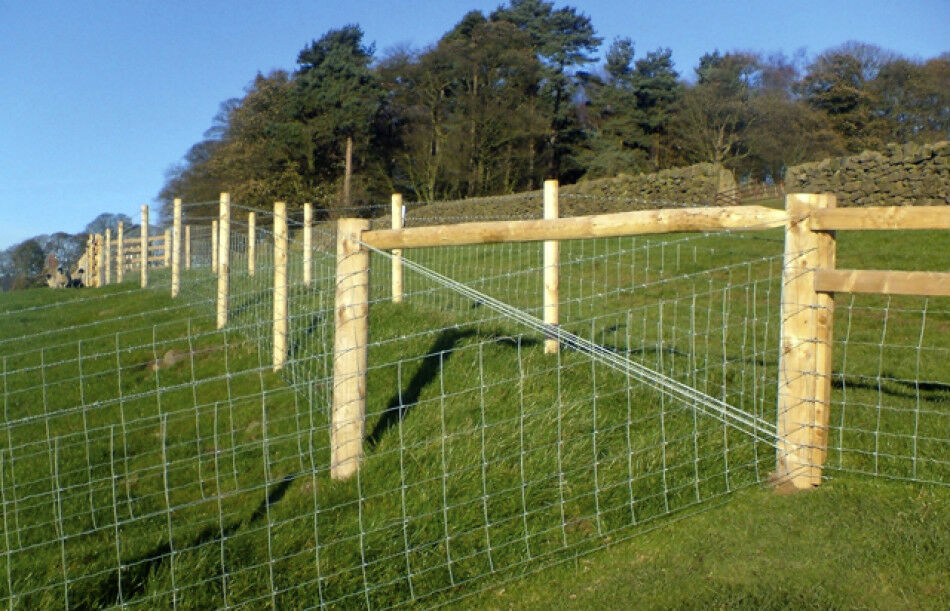 Lht8 80 15 Stock Fence 100m Roll Galvanised Wire Sheep