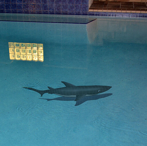 Mosaic Shark W Shadow For Swimming Pool Or Walll 61 Quot X
