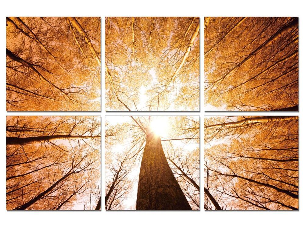 47 framed large modern contemporary canvas wall art print painting autumn trees ebay