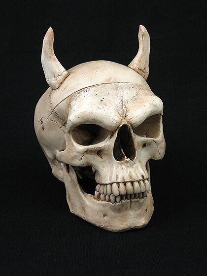 "Evil Harvey Skull w/ 2"" Horns, Halloween Prop, Human ... Human With Horns"