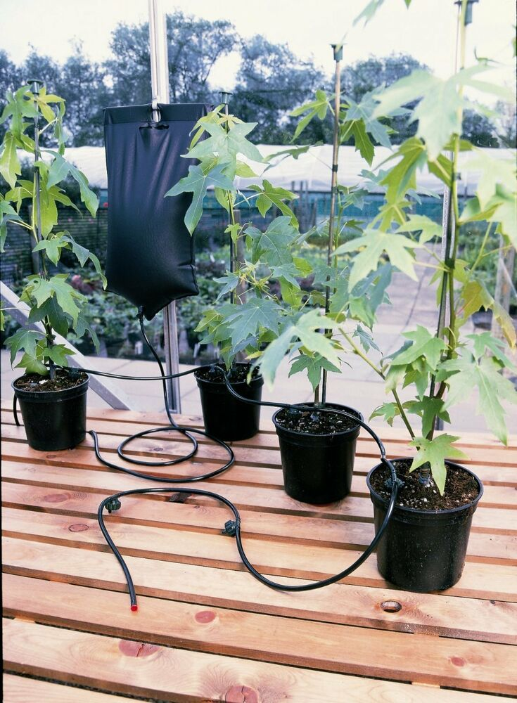 Instant Drip Watering Fed Gravity Irrigation Plants