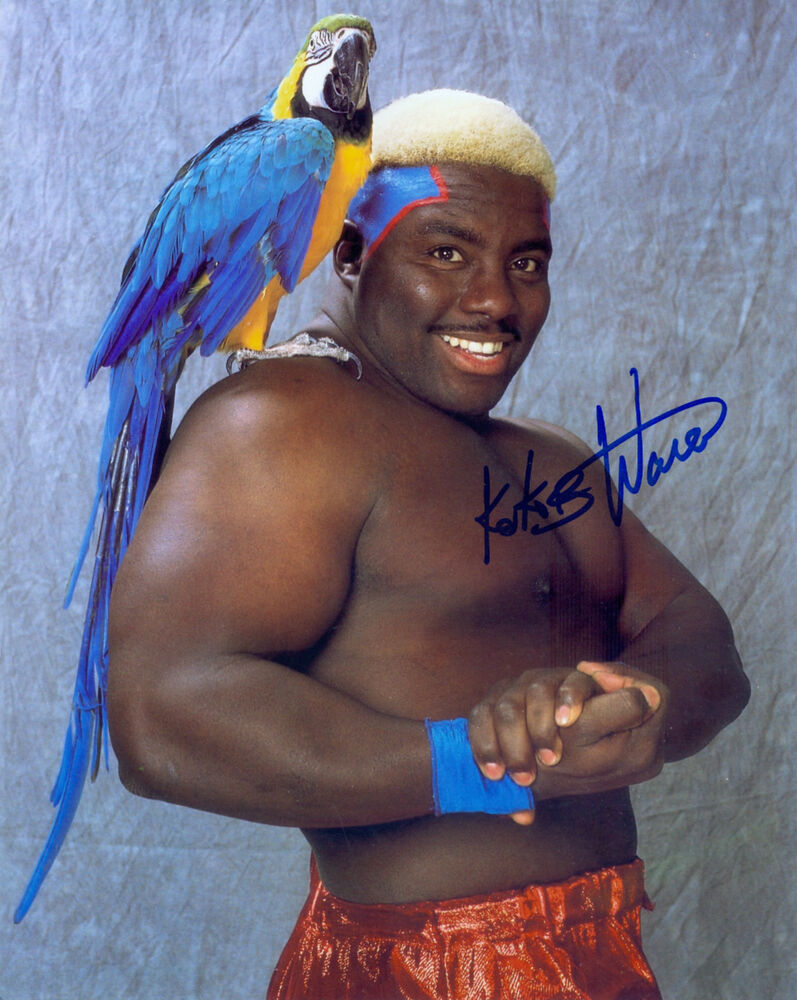 koko b ware wwe wwf signed autograph 8x10 photo ebay. Black Bedroom Furniture Sets. Home Design Ideas