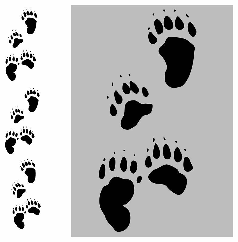 24 bear tracks paws prints wall floor sticker decal for Floor prints