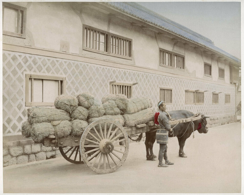 Photo Japan Fully Laden Bullock Cart Ebay
