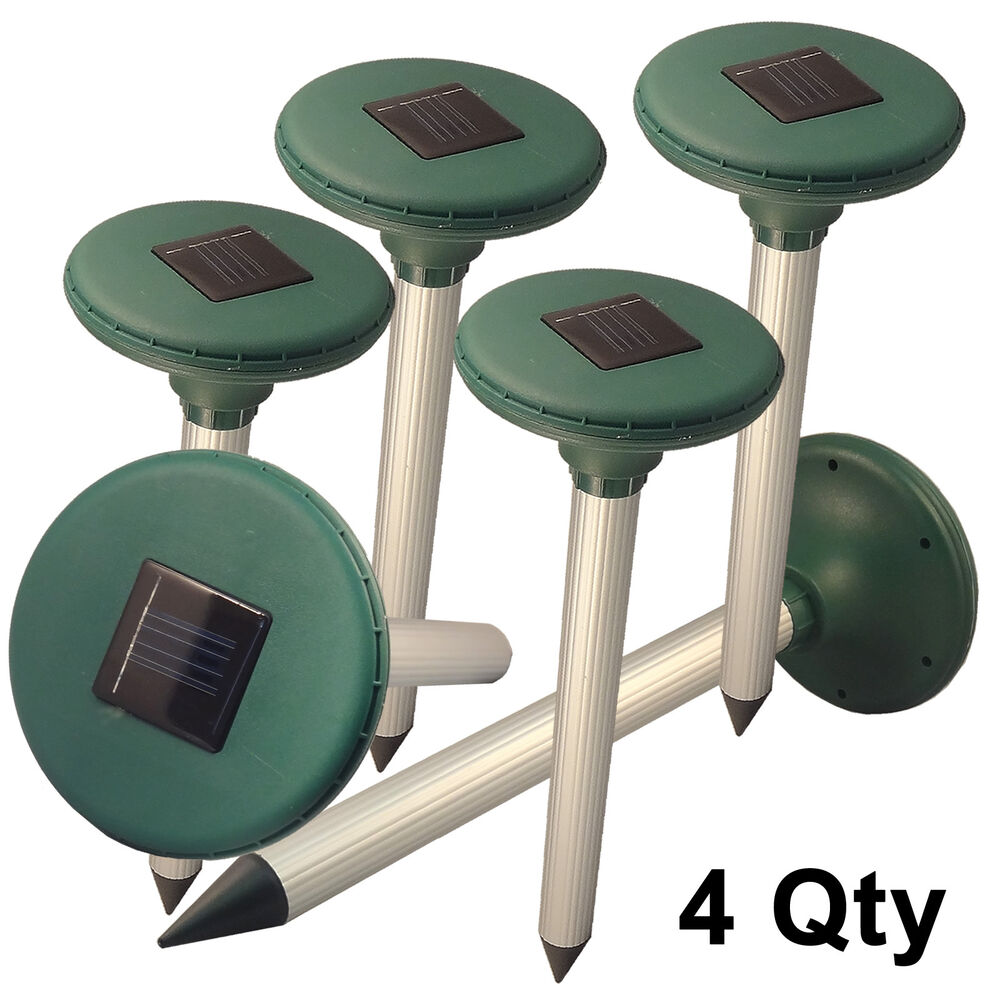 Reject Shop Outdoor Solar Lights: 4× Garden Solar Energy Power Multi Pulse Insect Pest