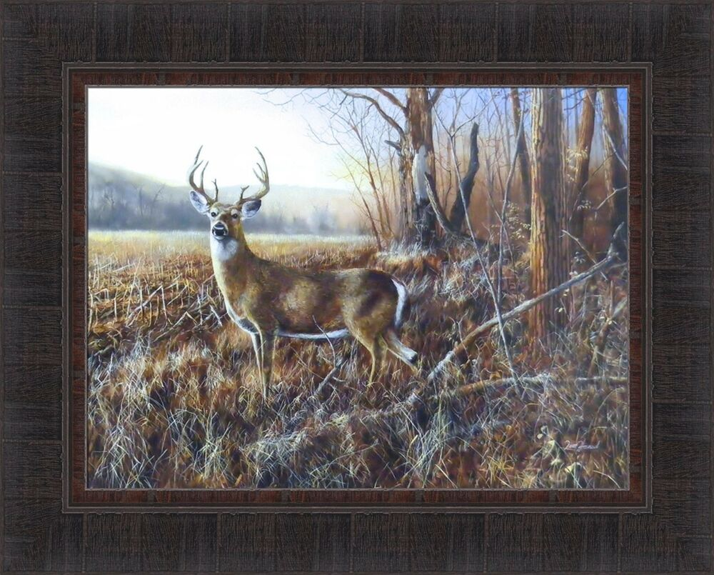 Bluff Country Buck By Jim Hansel 17x21 Whitetail Deer