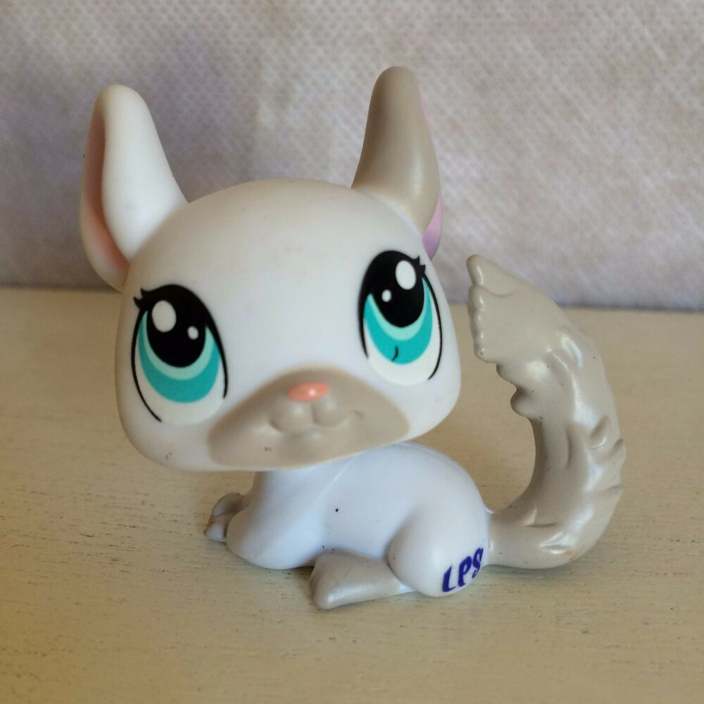 Littlest Pet Shop 1401 White Amp Gray Chinchilla With Blue