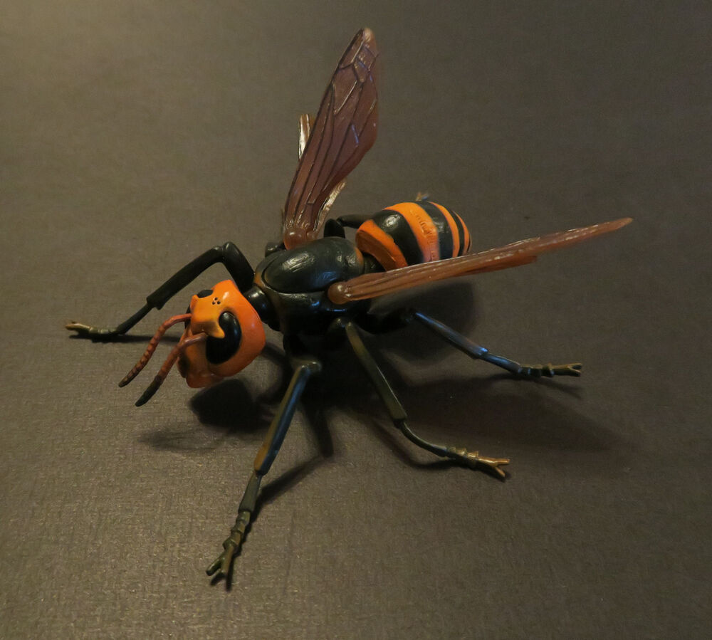 RARE Takara Tomy Asian Giant Wasp Hornet Bee Realistic ...