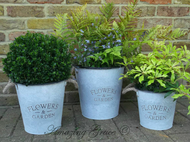 Vintage style french grey set of 3 metal garden planters for Metal bucket planter