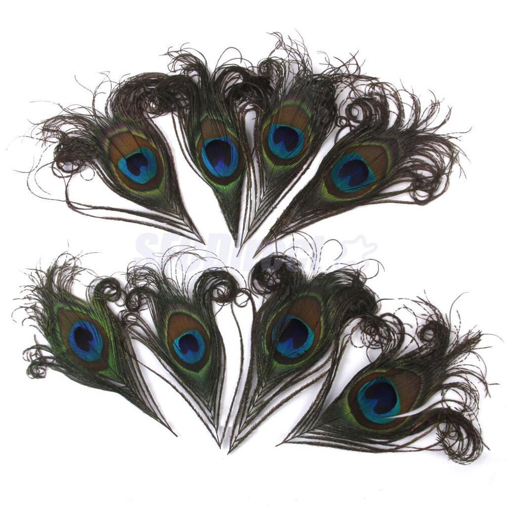 10 natural peacock eye tail feathers diy party craft for Where can i buy feathers for crafts