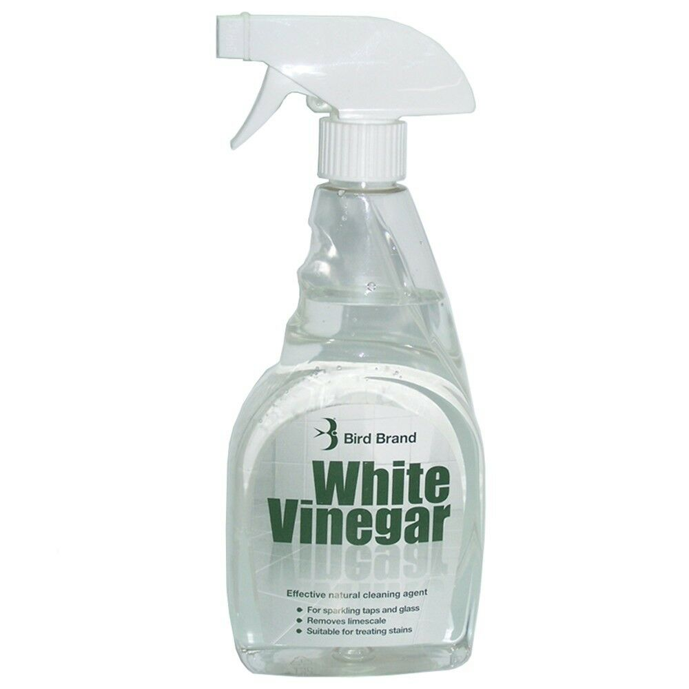 Bird Brand White Vinegar 500ml Spray Limescale Glass