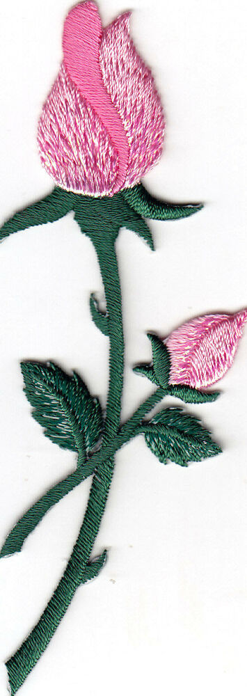 Roses pink rose buds flowers gardening iron on
