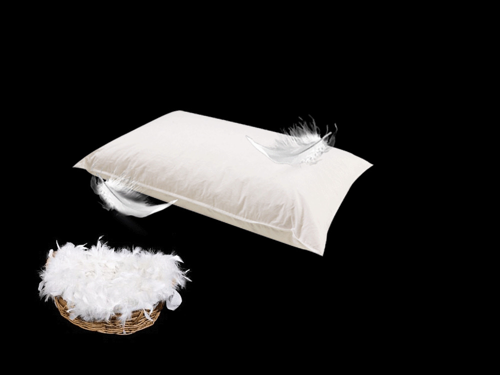 Luxury comfy duck feather pillows pairs where quality for Duck or goose feather pillows which is better