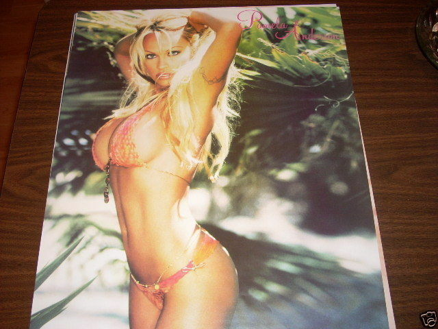 Remarkable message pam anderson pictures bikini