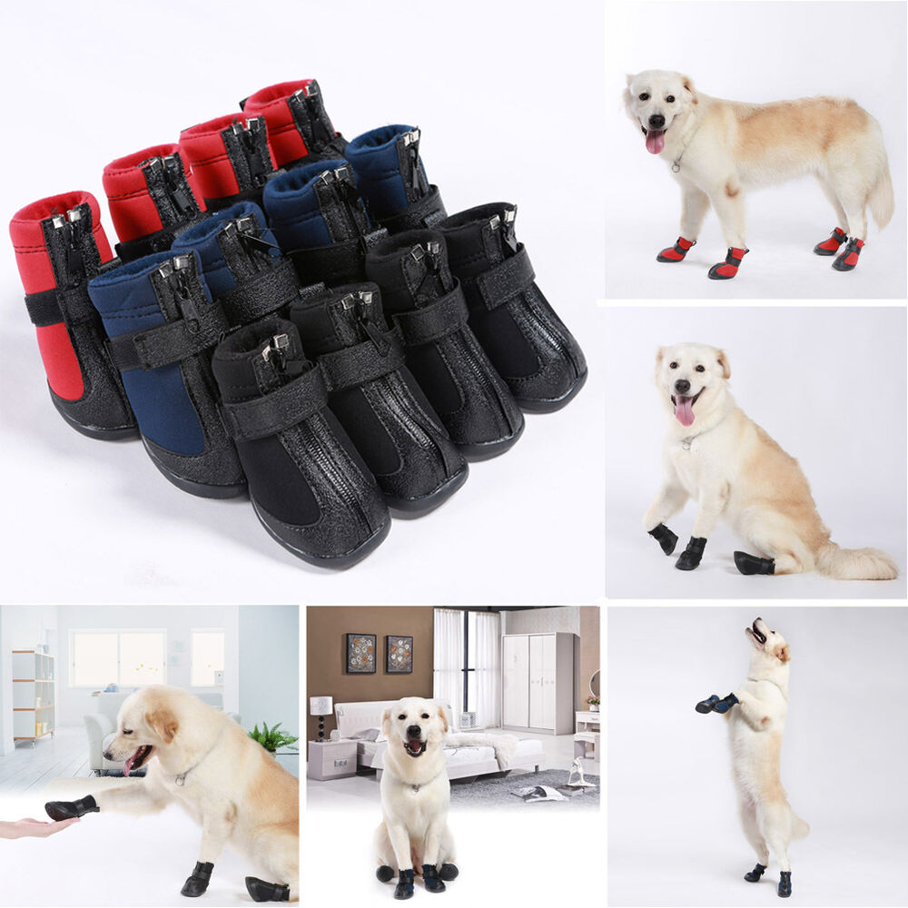 Puppy Boots For Dogs