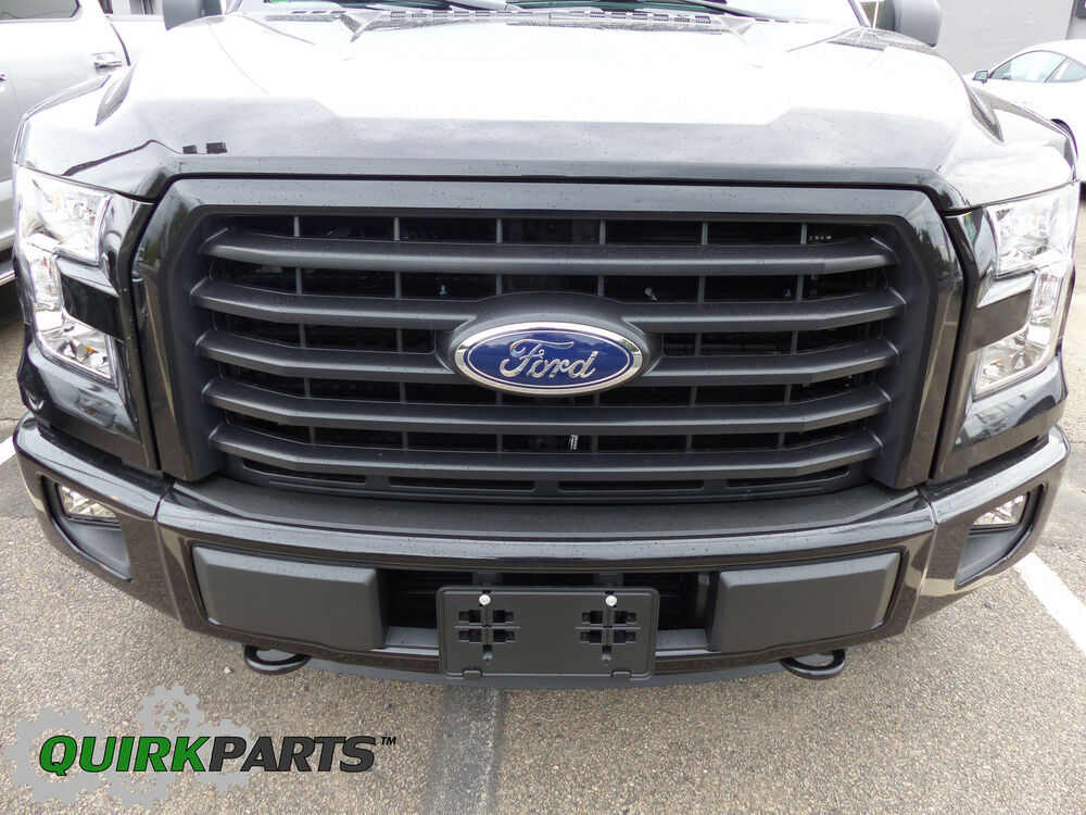 15 17 F150 5 Five Bar Paint To Match Unpainted Paintable