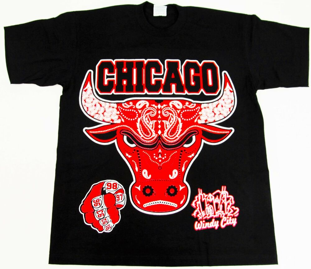 bulls paisley t shirt air jordan chicago windy city rings tee adult m 4xl new ebay. Black Bedroom Furniture Sets. Home Design Ideas