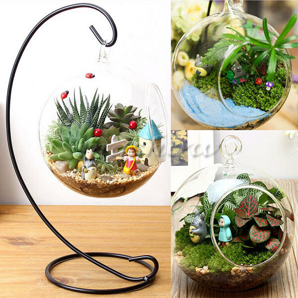 hanging glass ball vase flower plant pot terrarium container decor with stand ebay. Black Bedroom Furniture Sets. Home Design Ideas