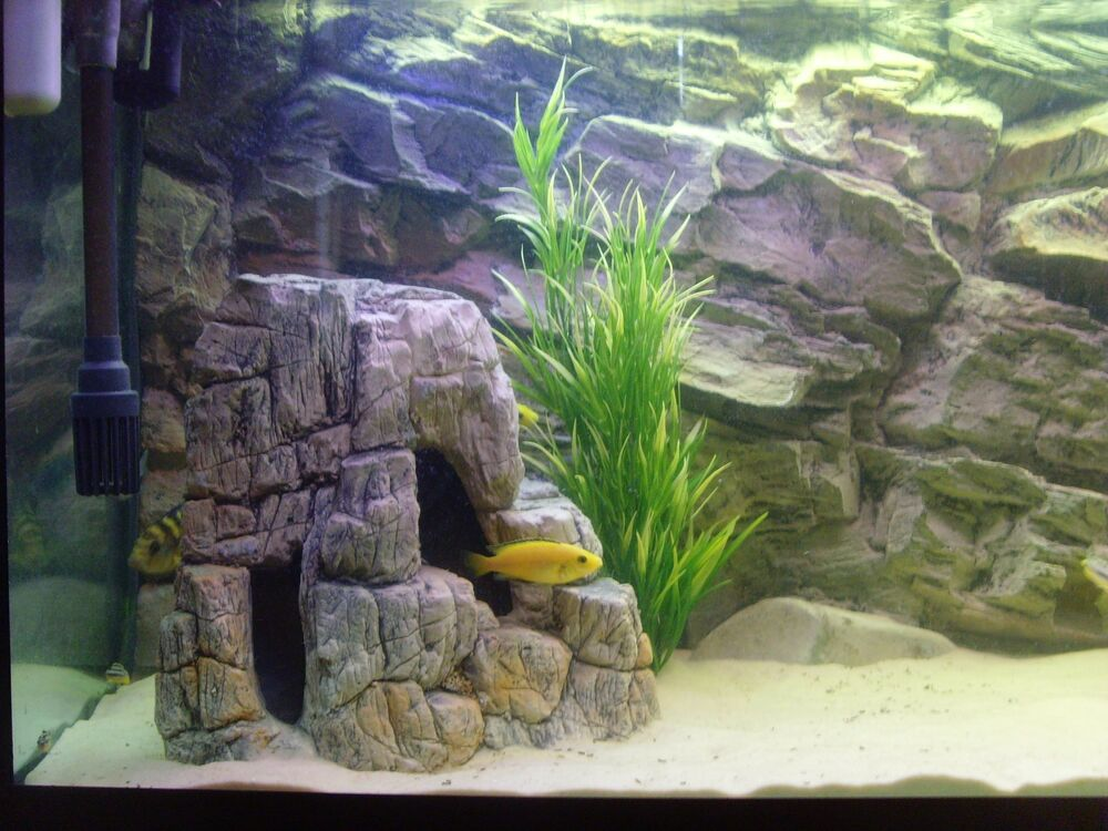 Aquarium 3d large rock stone xl ornament decoration for for Aquarium stone decoration