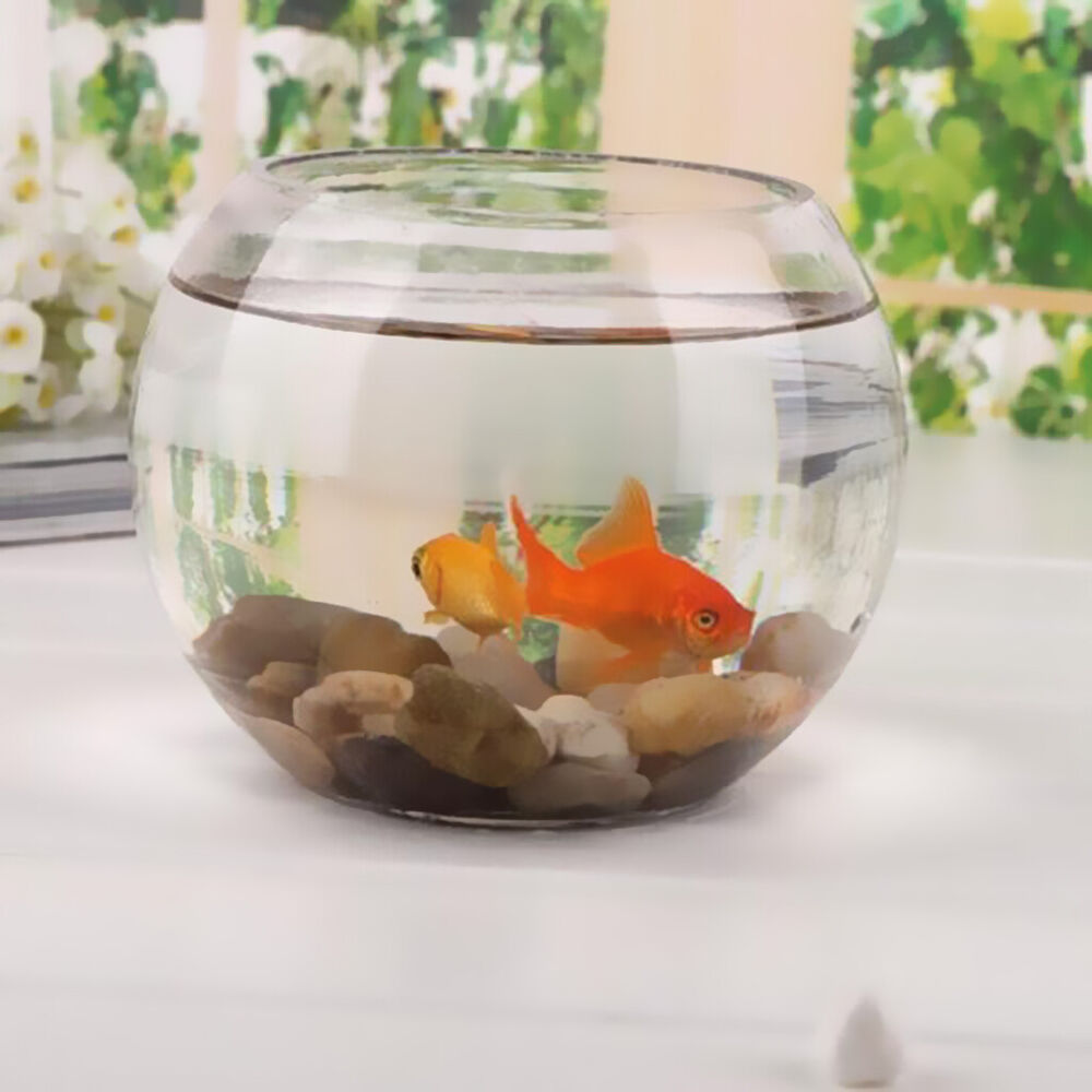 round transparent crystal glass bowl clear sphere vase fish tank turtle jar ebay. Black Bedroom Furniture Sets. Home Design Ideas