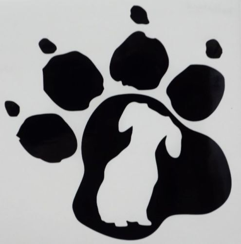How To Get My Dogs Paw Print