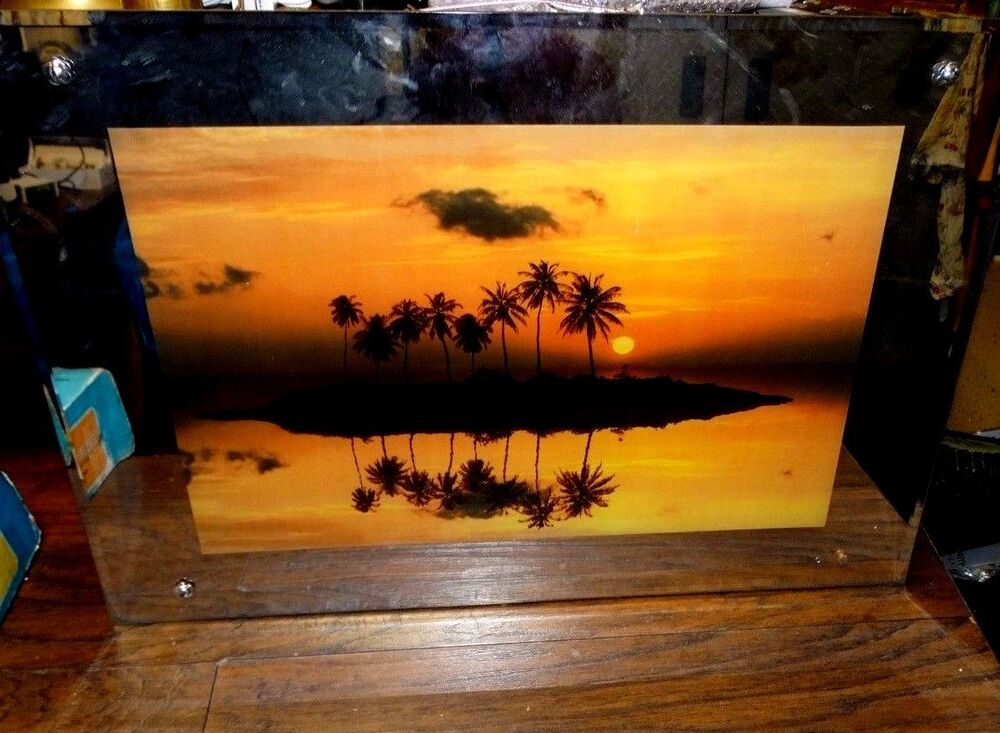 15473 Vintage Lighted Picture Framed Electric Tropical