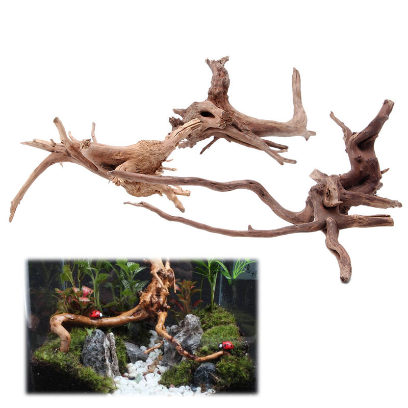 Wood natural trunk driftwood tree aquarium fish tank plant for Aquarium wood decoration