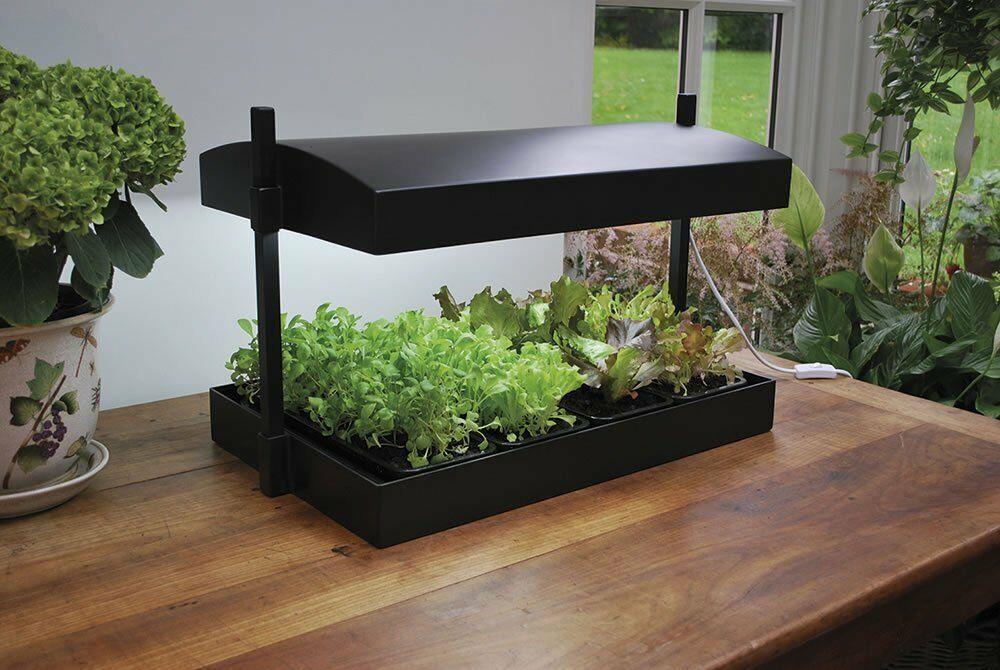 Indoor Micro Grow Light Garden Plant Propagator