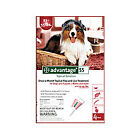 Bayer Advantage 55 Spot-On 4 Pack For Dogs 21 - 55 lb