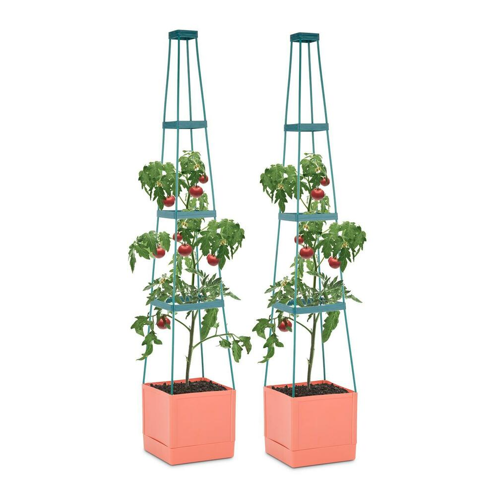 tomaten pflanzen garten k bel 2er set rankhilfe 25x150x25cm zucht anbau topf ebay. Black Bedroom Furniture Sets. Home Design Ideas